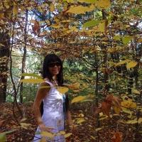 Chuyến đi xem lá vàng ở Canada năm 2013