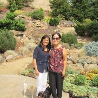 Kim Tien in Roseville