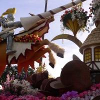 Lễ hội hoa hồng - 2011