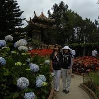 Hoàng Hoa
