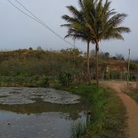 Nhà Xuân Nữ (Đơn Dương)