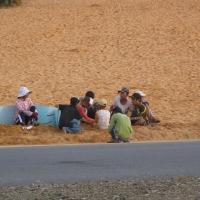 Những cuộc đời cát
