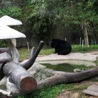 Vườn thú Đại Nam 020_6