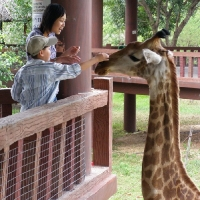 Vườn thú Đại Nam 031_3