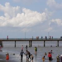 Biển Gò Công và cầu cảng