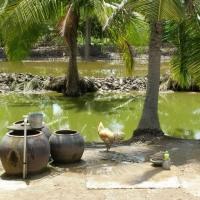 Cù lao Tân Phú Đông, Gò Công
