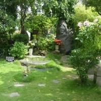 Ngày xuân đi thăm những khu vườn yên tĩnh
