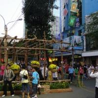 Xuân 2012 - Đường hoa Nguyễn Huệ