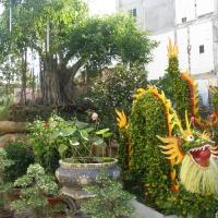 Vườn Lan _1