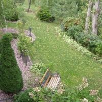 Một góc vườn