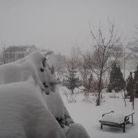 Vườn trước ngập tuyết tháng 12!