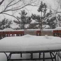 Deck phía sau nhà ngập tuyết cuối thu!