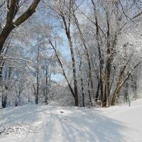 Tuyết cuối mùa