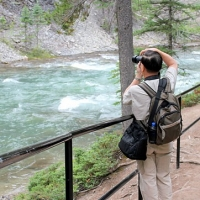 Johnston Canyon Aug 17 2011