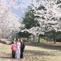 Hoa Thịnh Đốn Tháng 4, 2011