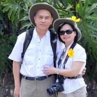 Hoa Vàng Nhiệt Đới - Trung Mỹ  03.2012