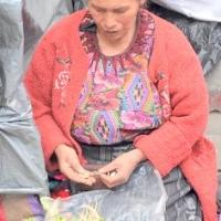 Tiền Bán Rau - Trung Mỹ  03.2012
