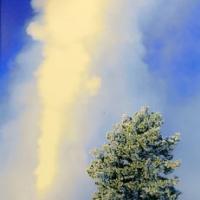 Thu Trên Công Viên Quốc Gia Yellowstone