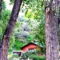 Zion Park 9.2013