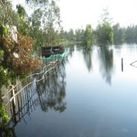 Nước lụt  mênh mông tháng 11.2009