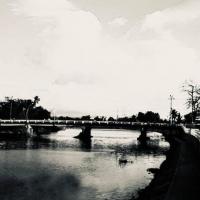 Cầu Dinh Ninh Hoà  ( Hình Chèn)