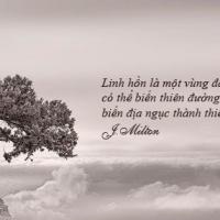 Linh Hồn