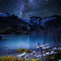 Những vì sao sáng - Hình chèn
