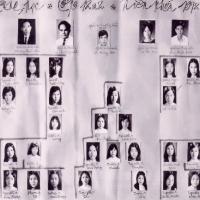 Lớp 12A2 72-73