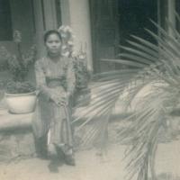 Hình Cũ Trong Lưu Bút của Đào Thanh Hòa