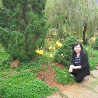 Đà Lạt Tháng 3 năm 2011 - Ngọc Dung