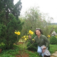 Đà Lạt Tháng 3 năm 2011 - Đông Oanh
