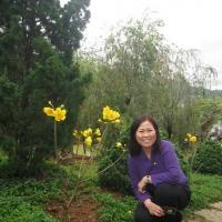 Đà Lạt Tháng 3 năm 2011- Giang ngọc Tuyết