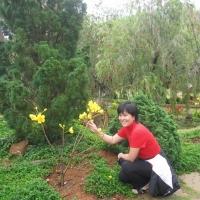 Đà Lạt Tháng 3 năm 2011 - Khanh